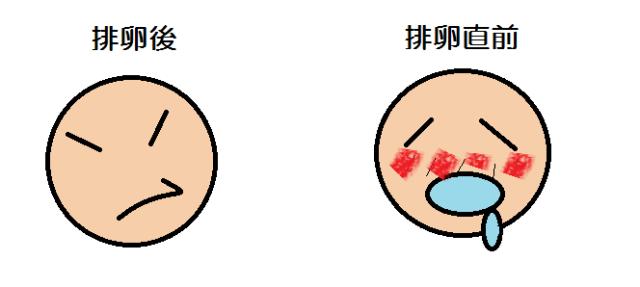 さん 日 福 式 排卵 排卵日~着床、タイミングの取り方や検査薬、福さん式など妊活情報まとめ|Life Design